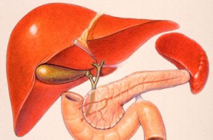 Scope Of Liver Cancer and More info!
