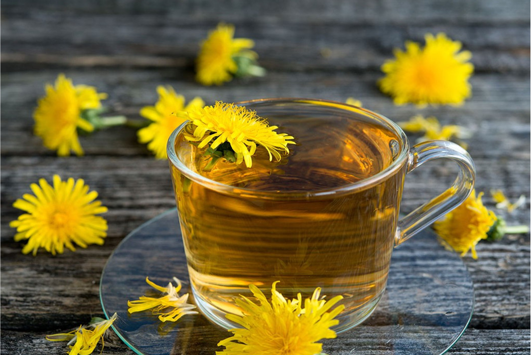 Benefits of Dandelion Tea for Cancer