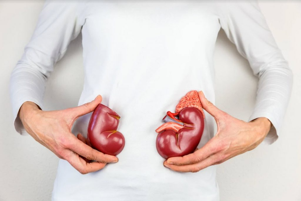 5 Symptoms Not to Ignore for Kidney Cancer
