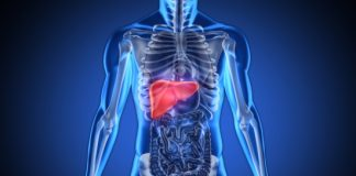 t cells treat liver cancer