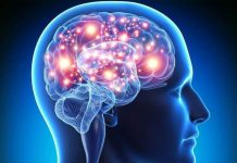 Foods to fight and deal with Brain Cancer