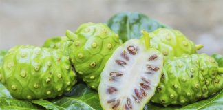 Amazing benefits of Noni fruit for cancer patients